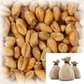 Солод «Wheat Blanc» (Пшеничный) Castle, 9 кг